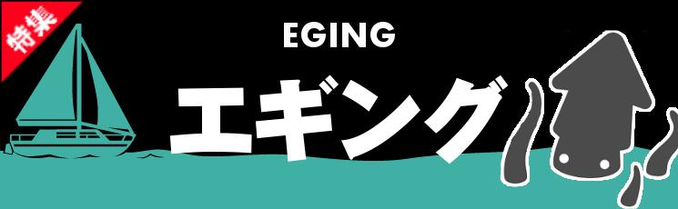 エギング特集